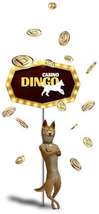 Dingo logo från casino bonus