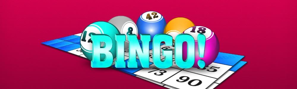 okładka strony bingo